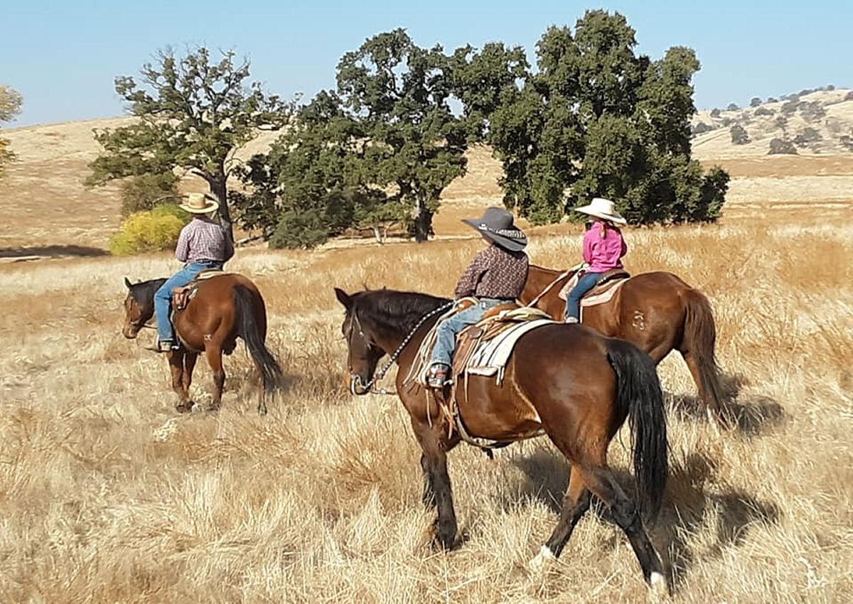 Little Ranch Hands Help Out