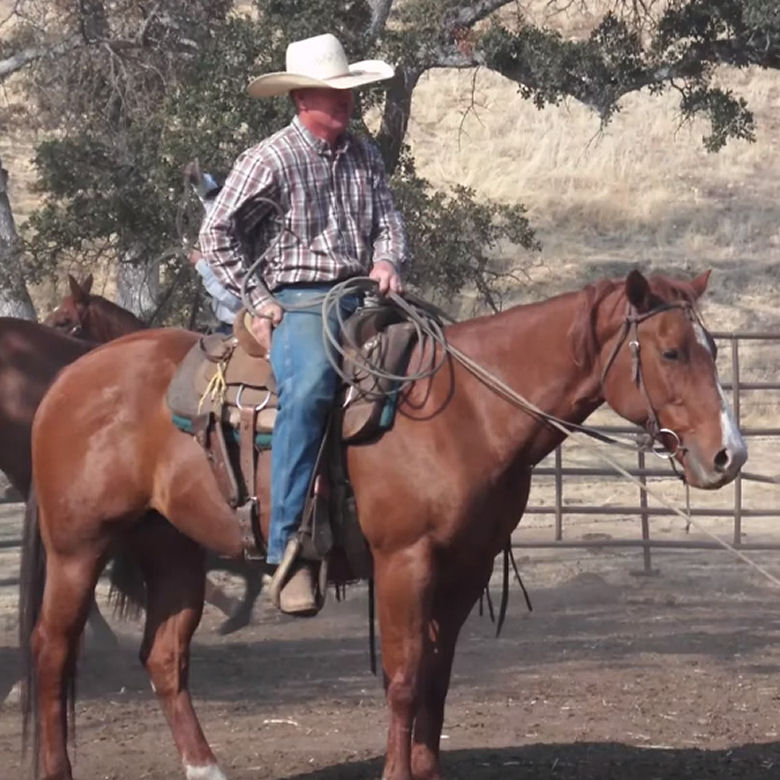 Tom Erickson Working the Ranch